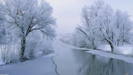 Winter Widescreen Wallpaper 1920x1080 484