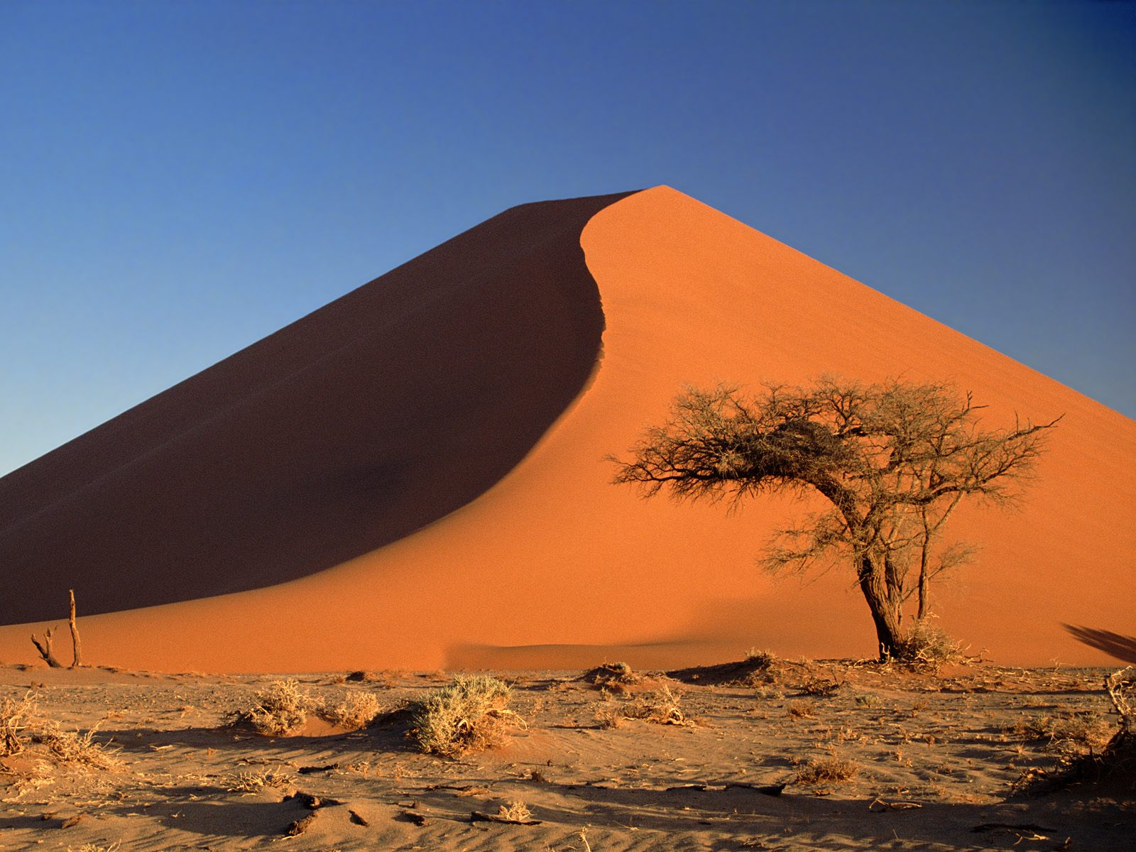 Sand dunes in Africa with Absolute Africa 1661