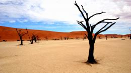 Download Namibia park desert High quality wallpaper 476