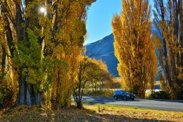 Vineyard in the Gibbston Valley is located on a spectacular narrow 212