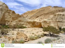 Natural landscape in Zohar gorge near Dead sea in Israel 1380