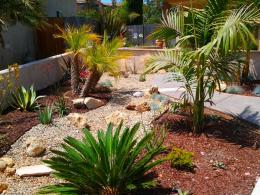 Basic Natural Desert Landscaping Ideas for Beginners | Decor and 366