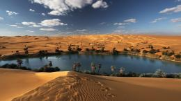 Mystery Wallpaper: Oasis in the Libyan Desert 717