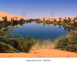 Stock Photoafrica, libya, desert, oasis of un alma 1271