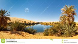 Ma LakeIdyllic oasis in the Awbari Sand Sea, Sahara Desert, Libya 976