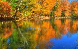 2560x1600 Reflections of Autumn Desktop Wallpaper Background Desktop 1219