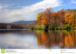 Colorful leaves near a peaceful lake in autumn 220