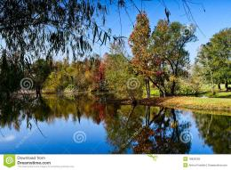 Fall Colors Royalty Free Stock PhotoImage: 16828765 1572