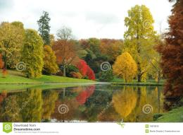The beauty of trees in autumn is reflected on a still lakeFall 1709