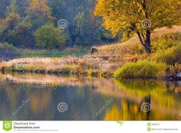 Peaceful Lake Coastline In Autumn Royalty Free Stock ImagesImage 686