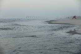 Foggy Morning at the Beach: Peace & Solitude | Just My Echo 406