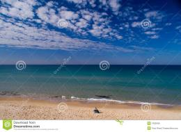 Peaceful Morning At The Sea Israel Royalty Free Stock ImageImage 645