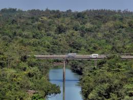 PanoramioPhoto of Sirindhorn Rainforest Bridge 617