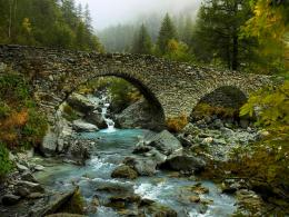 FOREST RIVER BRIDGE wallpaperForWallpaper com 1339