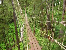 Rope Bridge, Tongass Nationalrain Forest, Alaska – KeaPOD 17 1854