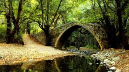 Forest Bridge Over Small Stream Wallpaper Picture For iPhone 1040