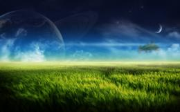 boldface moon wheat field images download wheat field wallpaper 1958