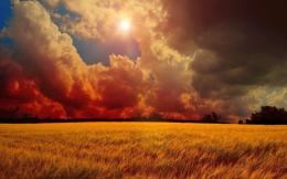 Image: Red Clouds Sun & Wheat Field wallpapers and stock photos 883