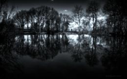 reflections in a dark pond wallpaper 1440x900 55a5d7c9e1ca4 jpg 1728