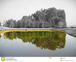 Color reflection in pond of a black and white landscape 203