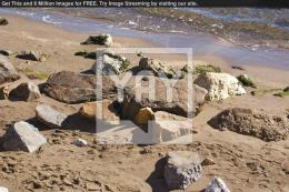 Royalty Free Image of Rocks On The Beach 1489