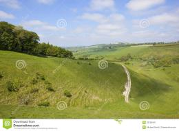 green summer valley in scenic painsthorpe dale england with woods 828