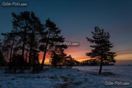 wallpaper sweden, Sweden, sunset, Trees free desktop wallpaper 1549