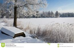Swedish Winter Panorama Landscape Royalty Free Stock PhotosImage 760