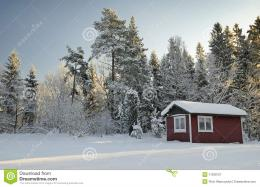 Typical Swedish Winter Landscape Royalty Free Stock Photography 564