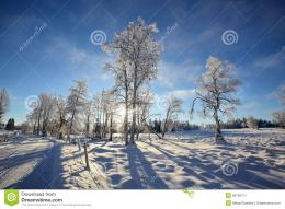 Swedish Winter Royalty Free Stock PhotographyImage: 28709777 368