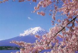 Fuji located on Honshu IslandThe Beautiful Island Nation of Japan 440