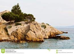 Pine Tree On The Rocky Beach In Brela Stock ImagesImage: 23143584 689