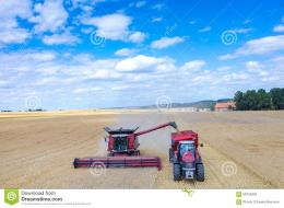 view on the combines and tractors working on the large wheat field 772