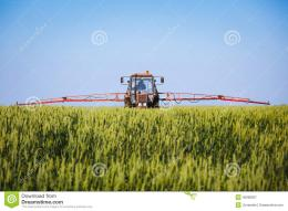 Tractor Spraying Wheat Field With Sprayer Stock PhotoImage 500