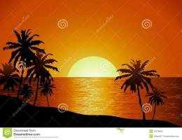 Sunset View In Beach With Palm Tree Royalty Free Stock ImagesImage 873