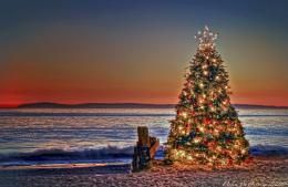 Christmas Tree Sunset at Crystal Cove State Park, Newport Beach 1109