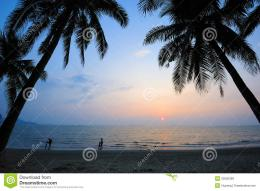 Beach At Sunset With Palm Trees Royalty Free Stock ImagesImage 212