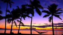 Tropical Beach Sunset Hammock Wallpapers HD 321