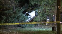 traveling at high speed goes airborne, lands in trees | FOX31 Denver 1784