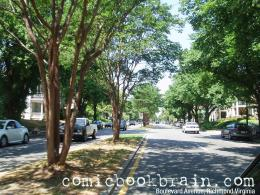 Photograph: Boulevard Avenue, Richmond City, Virginia June 2008 419