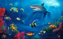 Underwater Life Mac Wallpaper Download | Free Mac Wallpapers Download 1483
