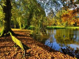Similar wallpapers for Bench at autumn park 909