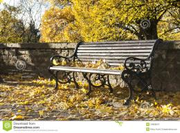 Park Bench In Autumn Royalty Free Stock PhotographyImage: 34669047 817