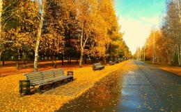 Sunny Autumn Day wallpapers | Sunny Autumn Day stock photos 774