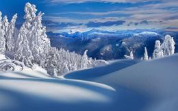 HD Winter Landscape Wallpapers 935