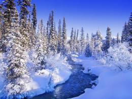 Nature landscape winter wallpaper X 516