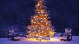wallpaper » Christmas pictures » Christmas landscape wallpapers 1891