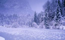 winter landscape wallpaper 2015Grasscloth Wallpaper 706
