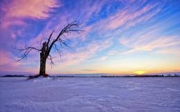 Winter landscape Desktop Wallpapers FREE on Latoro com 1888