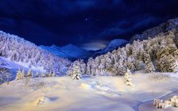 Winter Night Snow, Landscape | Free HD wallpapers 1275